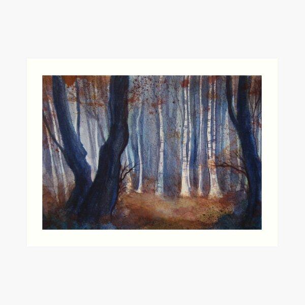 Dusk, Birch Wood Art Print