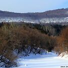 A Day in Winter ! by Elfriede Fulda
