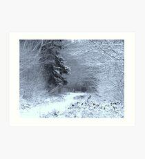 Snow at Havant Thicket Art Print