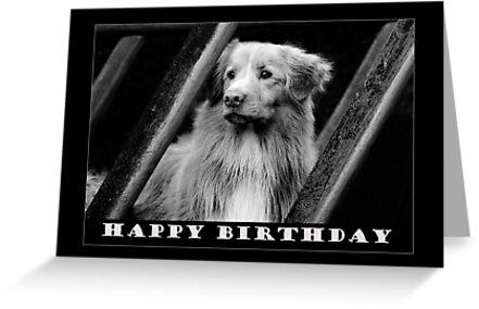 Birthday Card No 5 by Helen Green
