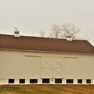 White Barn Red Roof by Graphxpro