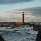 Whitby at high tide! by dougie1