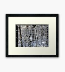 Lacy Framed Print