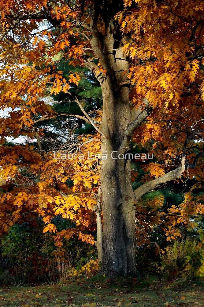 Mighty Oak by Laura Lea Comeau