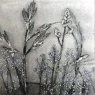 "Mornington Peninsula Grasslands 11 by Belinda ""BillyLee"" NYE (Printmaker)"