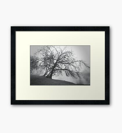 Trees bend to caress me Framed Print