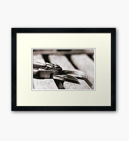 Snip Framed Print