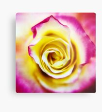 A Touch of Pink  Metal Print