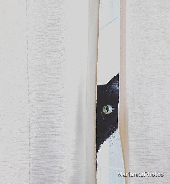curiosity by MariannaPhotos