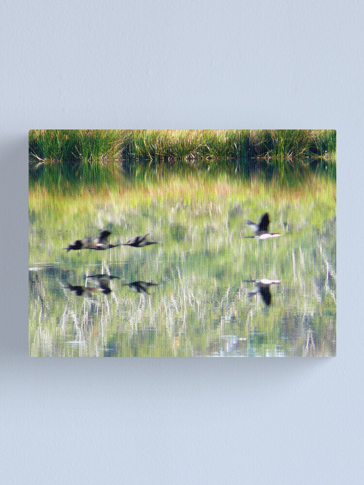 Alternate view of Go! Canvas Print