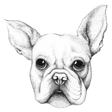 Cute Frenchie Pug by linnw