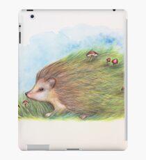 Launischer Igel iPad-Hülle & Klebefolie