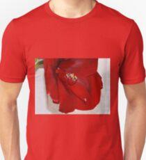 Amaryllis Long Stamen Macro Unisex T-Shirt
