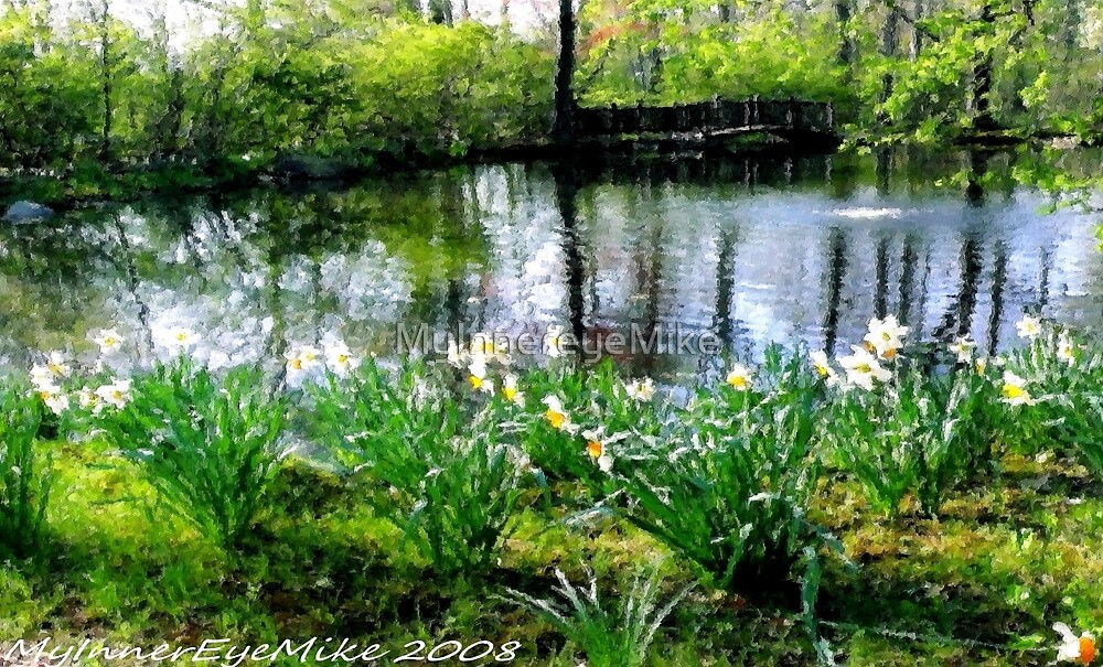 #308      Painted Pond by MyInnereyeMike