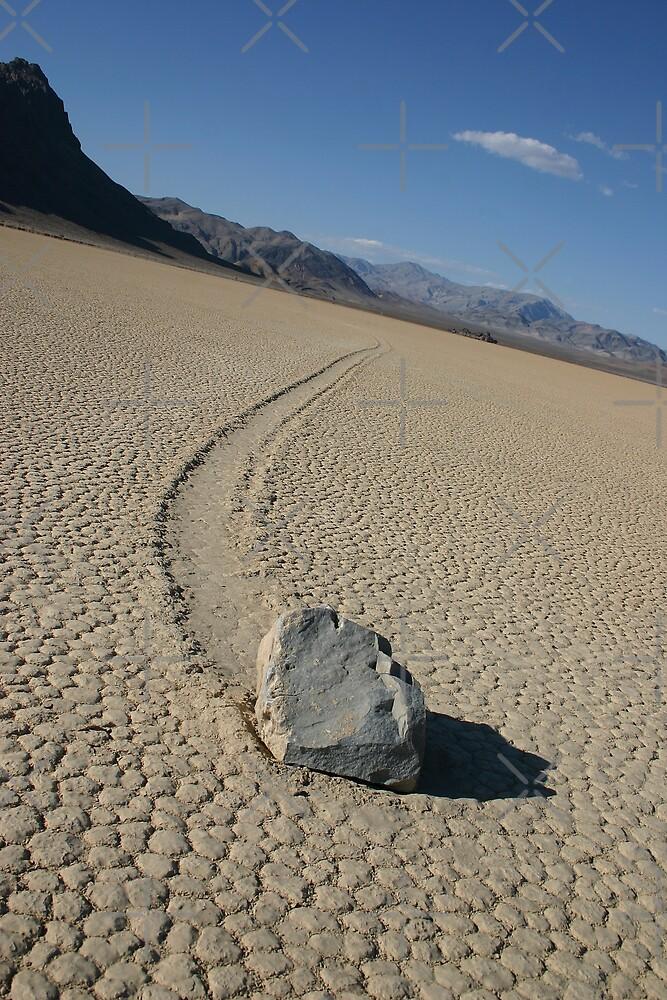 The Racetrack - Death Valley, California by CarolM