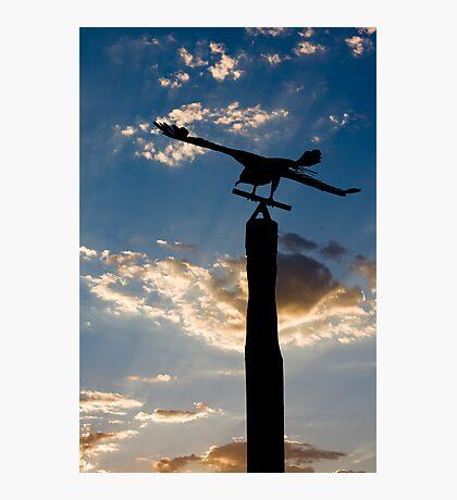 Flight Photographic Print