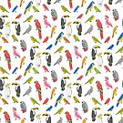 Tropical birds jungle animals parrots macaw toucan pattern  by Andrea Lauren