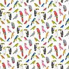 Tropical birds jungle animals parrots macaw toucan pattern  by Andrea Lauren
