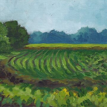 Fields Near Hexton by JMNeedham