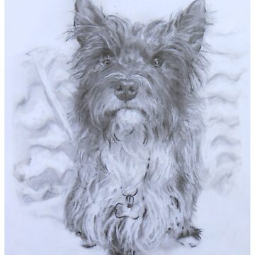 Terrier  by BlueWhippet
