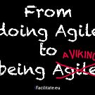 From doing agile to being a viking by Erwin Verweij