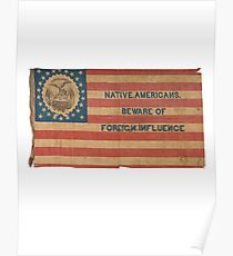 Ironic Vintage American Flag Poster