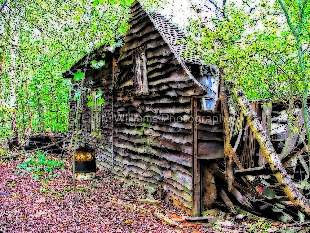 This Old House by Colin  Williams Photography