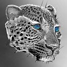 Leopard-Old-Blue-Eyes-Justin-Beck-Picture-2015098 by Justin Beck