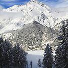 Snowy landscape by Steve plowman