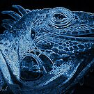 Lizard-Justin-Beck-Picture-2015080 by Justin Beck