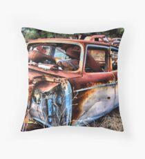 For Sale ...Cheap ~ BoneYard Series  Throw Pillow