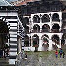 Rila Monastery  by tonymm6491