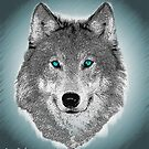 Wise Wolf Justin Beck Picture 2015089 by Justin Beck