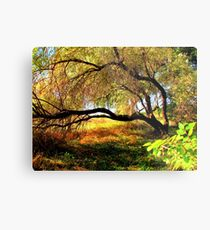 By The Snake River...Homedale, Idaho Metal Print