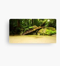 Wurrmbu Creek Canvas Print