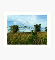 Country Feeling Art Print