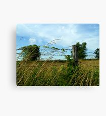 Country Feeling Canvas Print