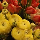 Macy's Flower Show 2015, Macy's Herald Square, New York City  by lenspiro