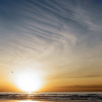 Galveston Beach Sunrise  by KateLCardsNMore