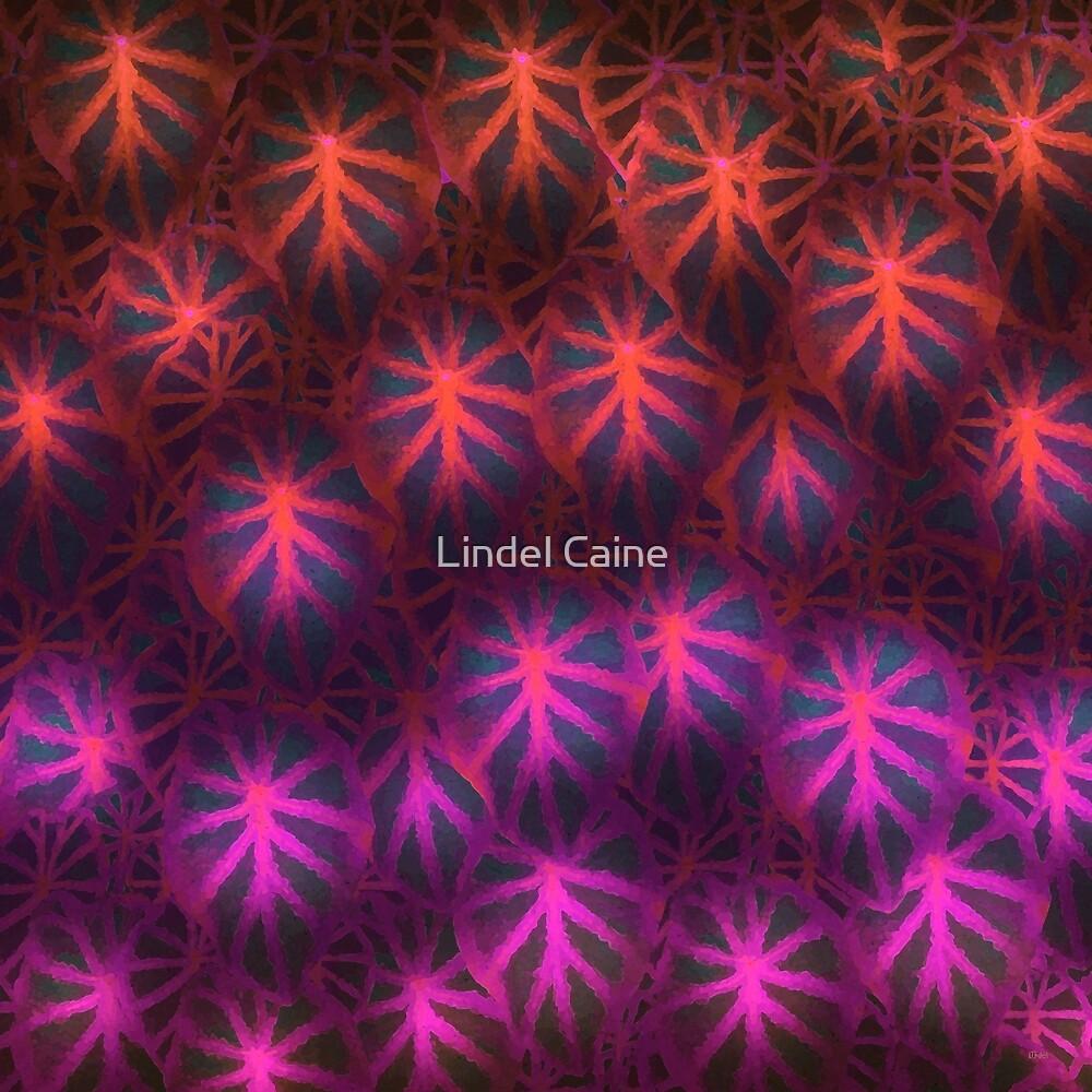Rare Jungle, Dusk by Lindel Caine