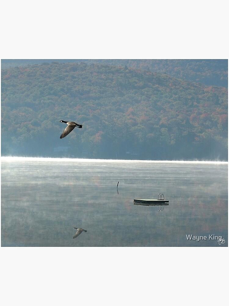 Goose Over Stinson Lake by waynedking