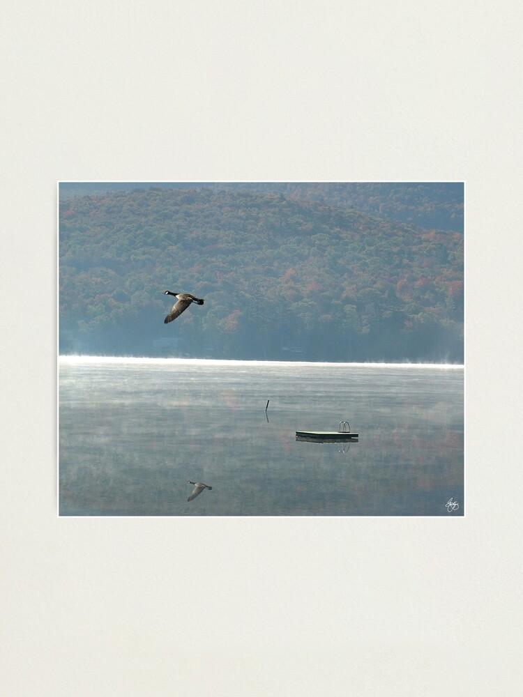 Alternate view of Goose Over Stinson Lake Photographic Print