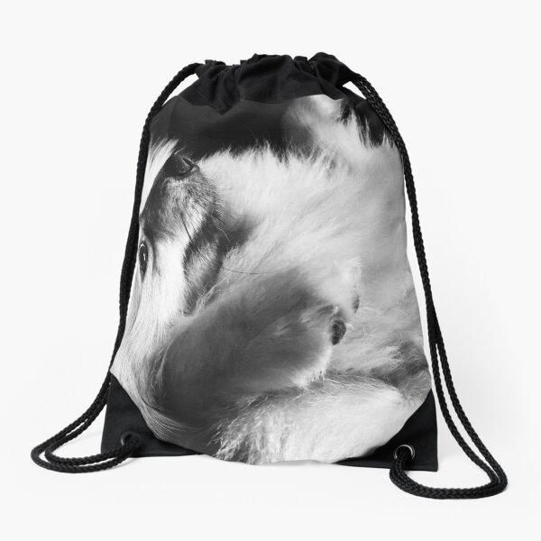 Just Love Pomeranians  Drawstring Bag