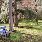 The Blue Bench Seat by Elaine Teague
