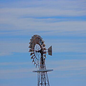 Blue Sky Kiwi Windmill by KazM