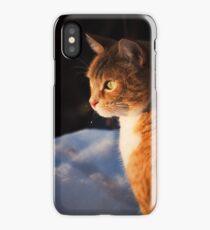 Lucio iPhone Case/Skin