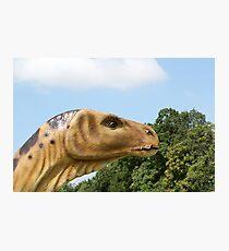 dinosaur head  Photographic Print