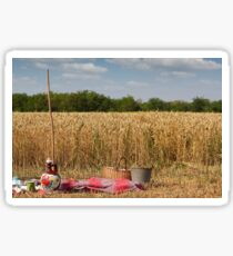 wheat field ready for harvest Sticker