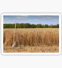 wheat field with old wooden rake Sticker