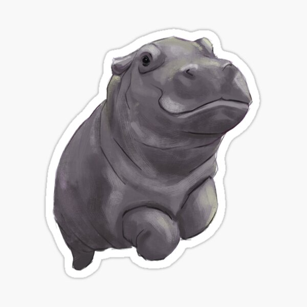 Baby Hippo Sticker